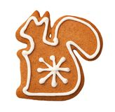 Gingerbread Squirrel Cookie Isolated on White Background. Top view Royalty Free Stock Images
