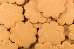 Gingerbread star cookies Royalty Free Stock Photography