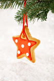 Gingerbread star cookies on white wood and  snow background Stock Photography
