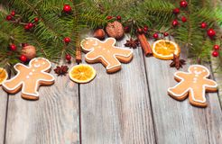 Gingerbreads and fir tree Stock Image