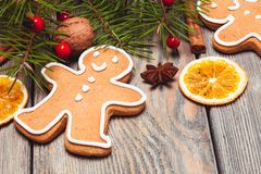 Gingerbreads and fir tree Royalty Free Stock Photos