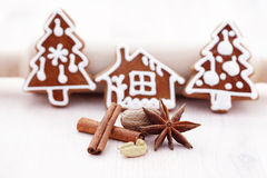 Gingerbreads with spices Stock Images