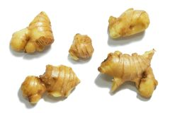 Gingers isolated on white background. Fresh gingers root or rhizome isolated on white background cutout royalty free stock photos