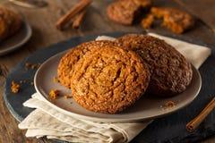 Теплые домодельные печенья Gingersnap Стоковое фото RF