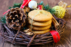 Gingersnap cookies Stock Images