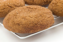Gingersnaps. Fresh baked gingersnap cookies cooling on metal rack with shallow depth of field Stock Photo