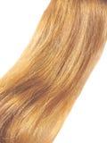 gingery волосы Стоковая Фотография RF