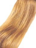 Gingery hair Royalty Free Stock Photography