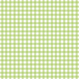 gingham kiwi Obraz Royalty Free