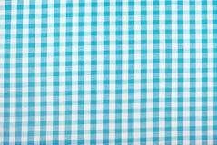 ginghammodelltablecloth Arkivfoto