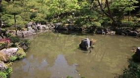 Ginkaku籍京都湖 股票视频