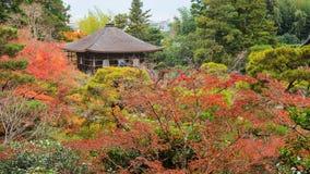 Ginkakuji świątynia przy jesienią odgórnym widokiem obraz royalty free