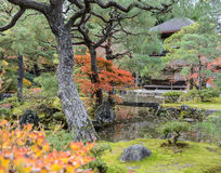 Ginkakuji temple with autumn colors in kyoto, Japan Stock Images