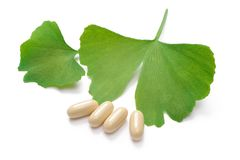 Ginkgo Biloba Royalty Free Stock Photo