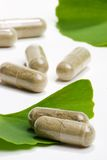 Ginkgo Biloba. Closeup of Ginkgo Biloba extract pills and fresh Ginkgo Biloba leaves best suited for aged people alternative medicine ads Royalty Free Stock Photo