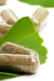 Ginkgo Biloba. Closeup of Ginkgo Biloba extract pills and fresh Ginkgo Biloba leaves best suited for aged people alternative medicine ads Stock Image