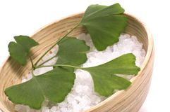Ginkgo biloba bath royalty free stock image