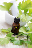 Ginkgo biloba essential oil Stock Images