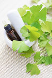 Ginkgo biloba essential oil Royalty Free Stock Photography