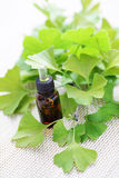 Ginkgo biloba essential oil Stock Photo