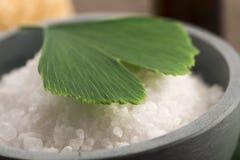 Ginkgo biloba leaf and bath salt Stock Image