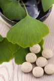 Ginkgo biloba leaves and pills Royalty Free Stock Images