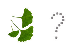 Ginkgo biloba leaves with pills question mark on white background Royalty Free Stock Photography