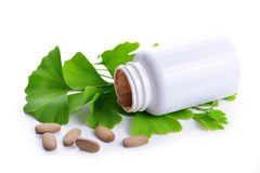 Ginkgo Biloba leaves and tablets with bottle. Isolated on white background Royalty Free Stock Photo