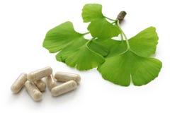 Ginkgo biloba liście i medycyny kapsuły pigułki Obraz Stock