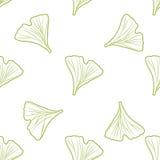 Ginkgo biloba pattern seamless.  Silhouette of Stock Image