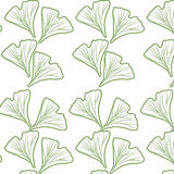 Ginkgo biloba pattern Royalty Free Stock Photo