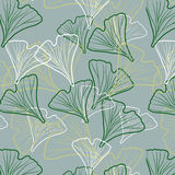 Ginkgo biloba pattern. Silhouette of ginkgo leaves Stock Images