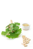 Ginkgo Capsules Stock Photography