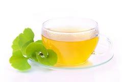 Ginkgo de thé Image stock