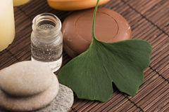 Ginkgo with essential oil Stock Image