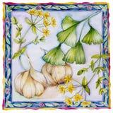 Ginkgo, Garlic, St John's wort Royalty Free Stock Photography
