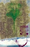 Ginkgo Leaf  Stock Image