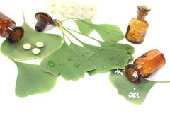 Ginkgo leaf with pharmacist bottle Royalty Free Stock Image
