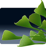 Ginkgo Leaves in the Evening Royalty Free Stock Images