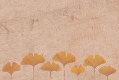 Ginkgo leaves on japanese paper background Royalty Free Stock Image