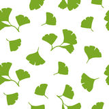Ginkgo Leaves Seamless Background Vector Stock Images