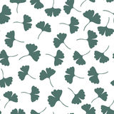 Ginkgo leaves seamless pattern. Herbs vector background. Can be used for wrapping, textile and package design Stock Photos
