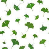Ginkgo leaves Seamless Pattern on white background. Vector. Illustration vector illustration