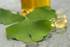 Ginkgo med nödvändig olja royaltyfria foton