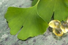 Ginkgo med nödvändig olja royaltyfri foto