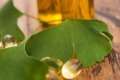 Ginkgo met etherische olie royalty-vrije stock afbeeldingen