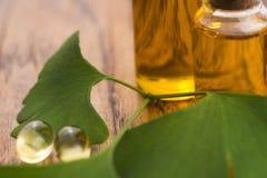 Ginkgo met etherische olie royalty-vrije stock afbeelding
