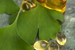 Ginkgo met etherische olie stock fotografie