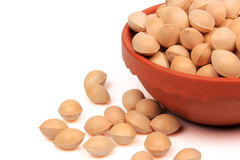 Ginkgo nuts Royalty Free Stock Images