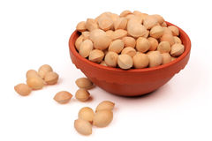 Ginkgo nuts Stock Photography
